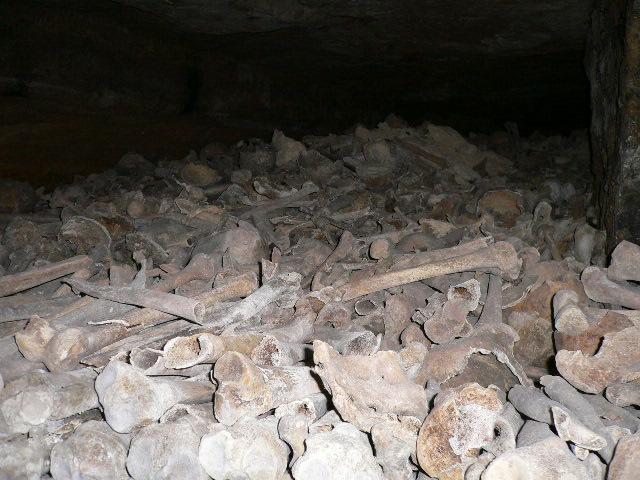 Pulling a y0da... Paris-Catacombs-unsorted-pile-of-bones